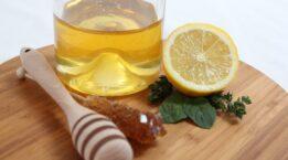 -nane-limon-nasil-yapilir