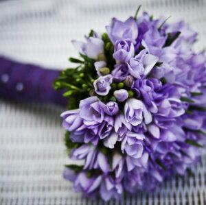 Soru 15: Güzel Bir Çiçek Resmi Nereden Bulunur?